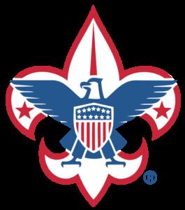FleurDeLis_ bsa logo
