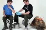 BSA-instructional-videos